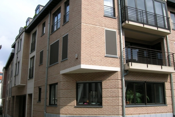 Cegły Nelissen - Heidebloem - ROSADO