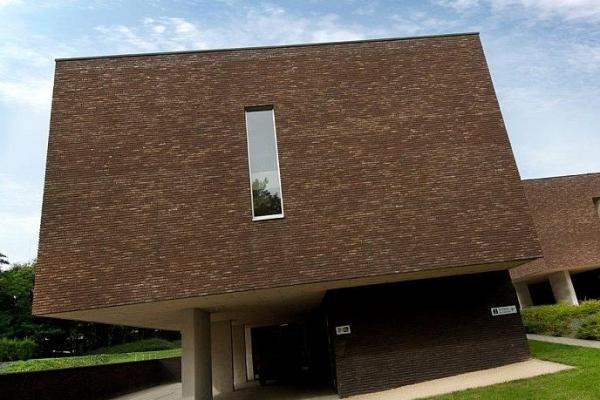 Cegły Nelissen - Maassteen